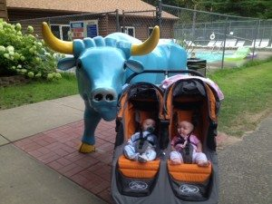 babe-the-blue-ox-twins